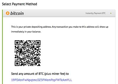 deposit screen in bitcoins qr