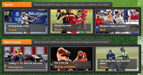 Wide selection of betting in cloud bet site.