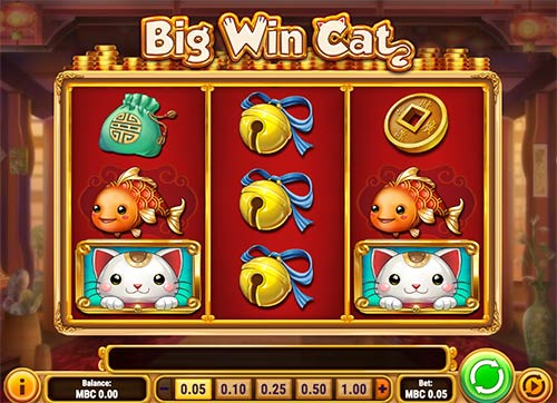 Big Win Cat slot game from Play'n GO game provider.