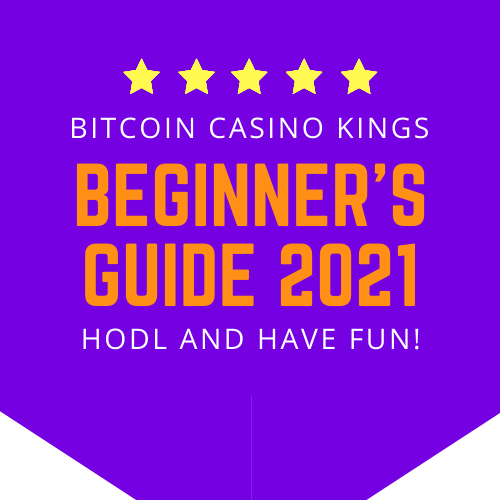 beginners guide to bitcoin casinos 2021