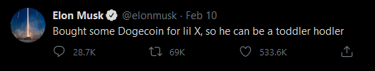 Elon Musk buys DOGE